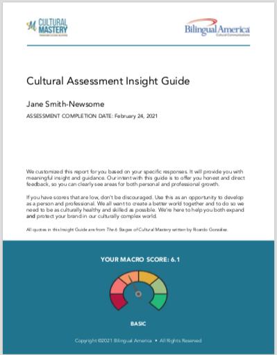 Cultural Assessment Insight Guide