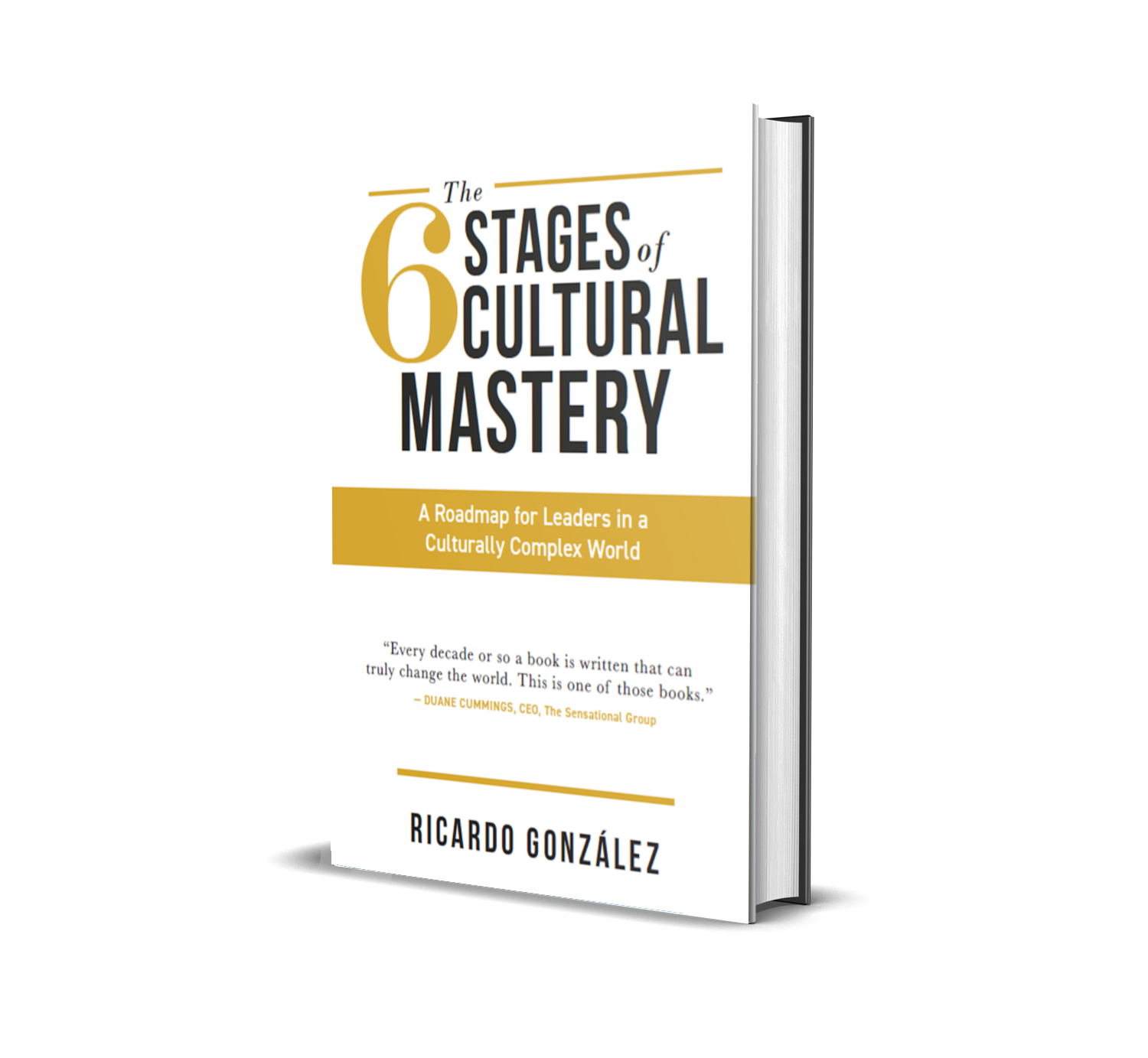 6 Stages of Cultural Mastery Book Offer